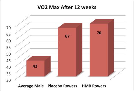 VO2 Max Comparison
