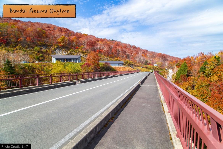 autumn_road_04