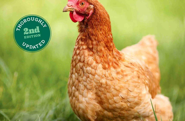 622013.ChickenHealth.Cover