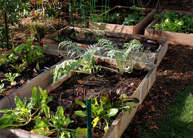 Tilly's Nest-vegetable garden fallwp