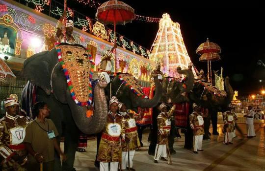 Holy Tirumala Temple Elephants Saluting Their Holy Lord
