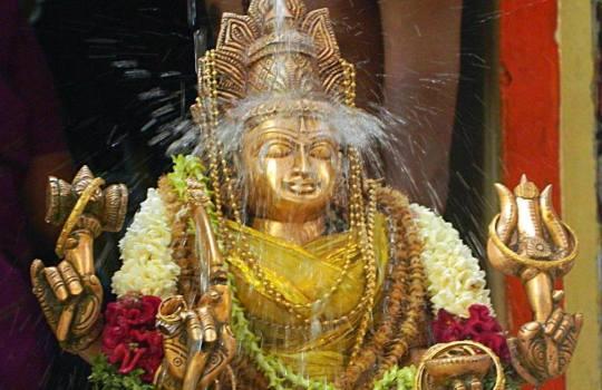 Mother Goddess Gauri