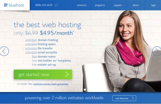bluehost-review-2014