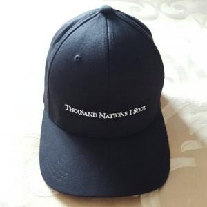 TN1S Box Logo Hat