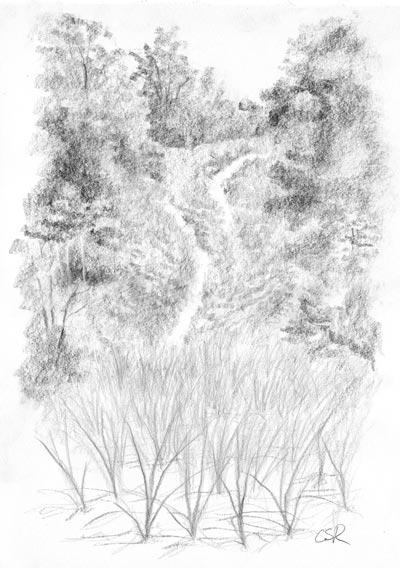 Lake Michigan - Dune and Grass