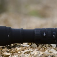 Sigma 150-500mm F5-6.3 APO DG OS HSM review