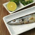 焼き魚のお皿におすすめ。おしゃれな長皿・魚皿の食器通販ショップ集