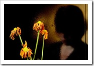 Flores y tristeza