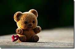 La importancia del cariño y amor en nuestras vidas
