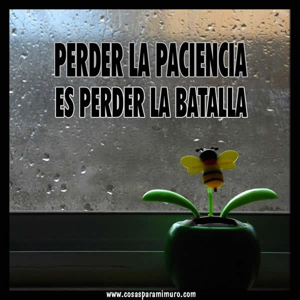 Perder la paciencia es perder la batalla