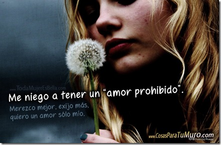 Ningún amor prohibido