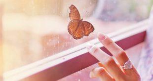 Cambios a realizar para sentirte feliz, libre y bien contigo misma