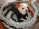 Como hacer una cama para perros reciclada