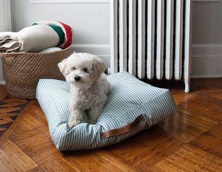 como hacer almohadones para perros