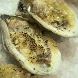 oysters with parmesan
