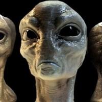 Alien Abduction In Florida