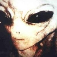 Alien Close Up Large Eyes