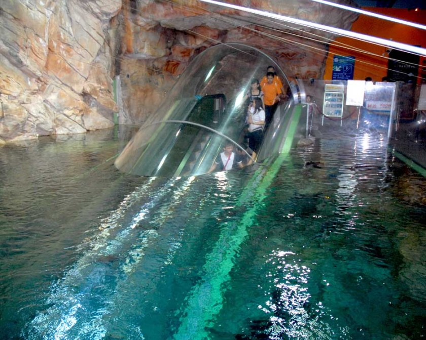 Top Ten Most Amazing Aquariums in the World
