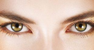 Top 10 Best Eyebrow Stylists in Fashion World