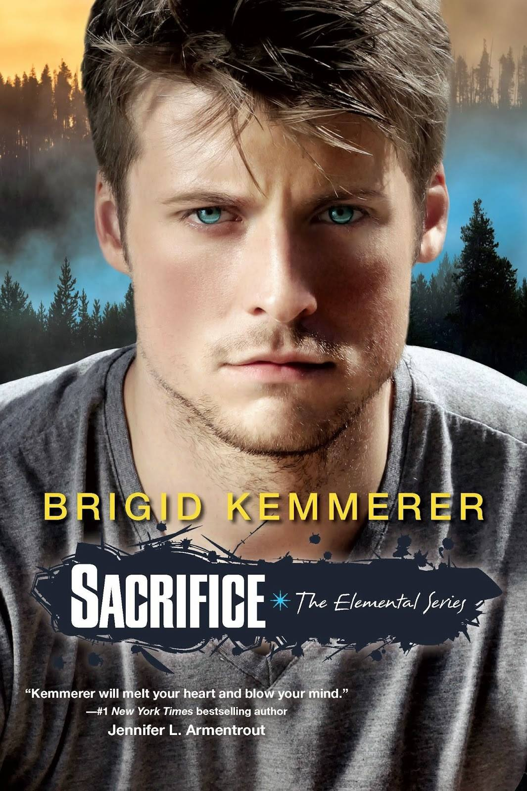 Sacrifice (Elemental #5) by Brigid Kemmerer