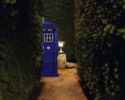 Doctor Potter meme Harry Potter Doctor Who crossover TARDIS hedge maze