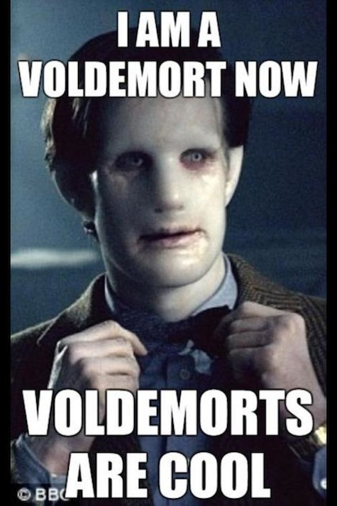 Doctor Potter meme Doctor Who Harry Potter crossover Voldemorts are cool Matt Smith