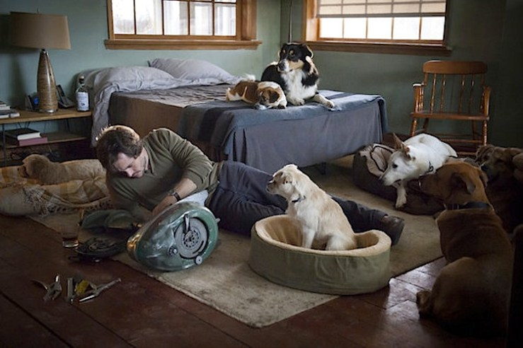 Will Graham with all of his dogs