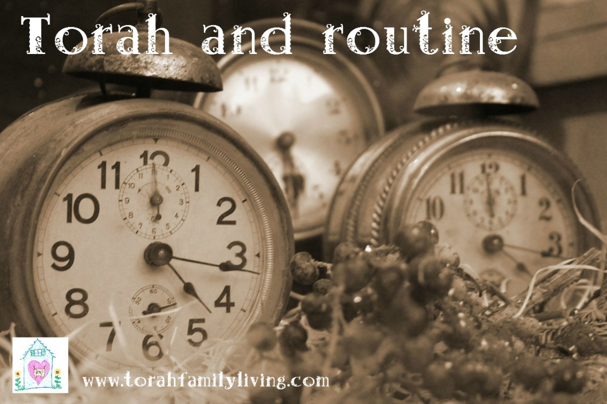 Torah home management - routine