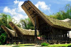 Tongkonan, Toraja House