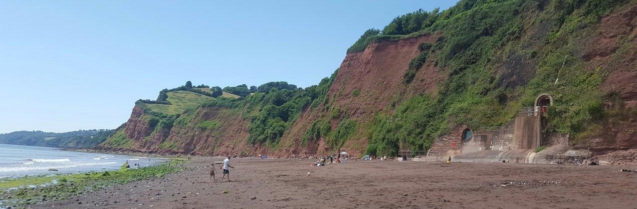 Dog Friendly Beaches In Shaldon