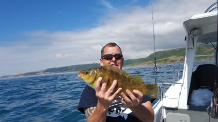 Boat Charter Fishing Wrasse