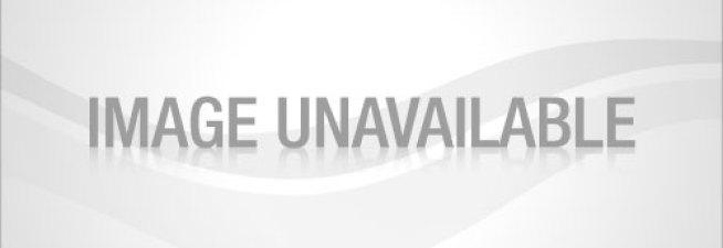 gerber-gradiates