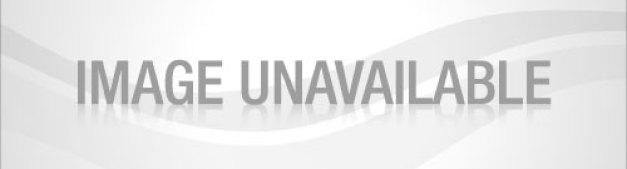 bagel-bites