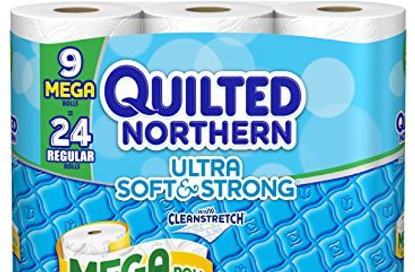 New Coupons For Quilted Northern Bath Tissue & More ... : coupons for quilted northern - Adamdwight.com
