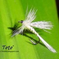 Lajita... pero como mosca seca... by Toto®