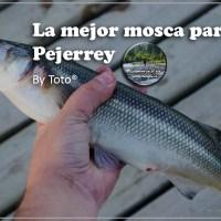 La mejor mosca para el pejerrey... by Toto®