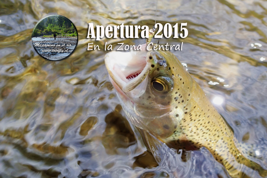 Apertura 2015