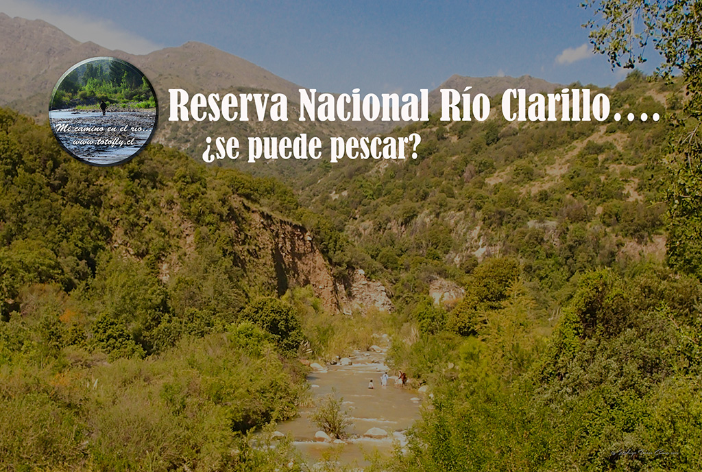 Reserva Nacional Río Clarillo.... se puede pescar??