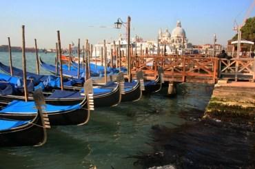 gondolas tied to the dock in Venice, Italy