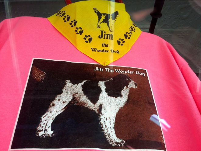 Jim the wonder Dog items for sale