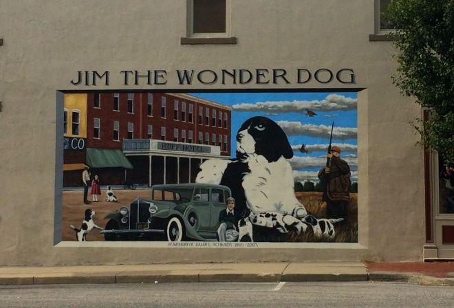 Jim the wonderdog mural