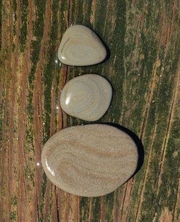 Layered rocks wet