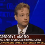 Log Cabin Head Tries To Explain Hagel Opposition On Fox News: VIDEO