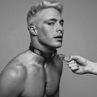 Colton Haynes Joins the Cast of 'Scream Queens' for Season 2