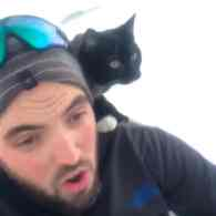 Sledding with a Cat is the Purrrfect Winter Sport: WATCH
