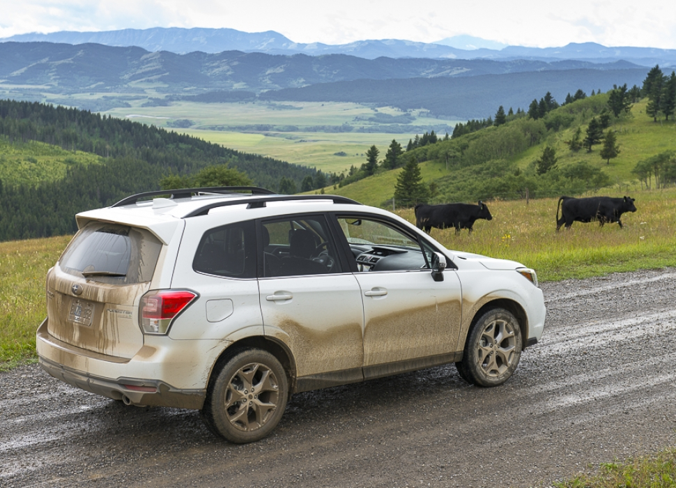 first drive new 2017 subaru forester explores the cowboy. Black Bedroom Furniture Sets. Home Design Ideas