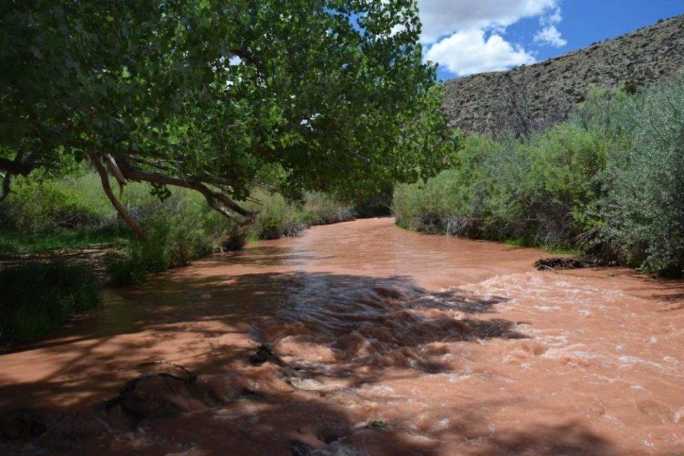 The Fremont River