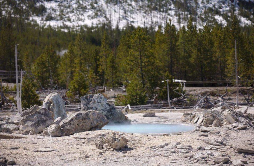Porkchop Geyser, Norris Geyser Basin, Yellowstone National Park