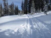 Back on the trail toward Boreal Ski Resort