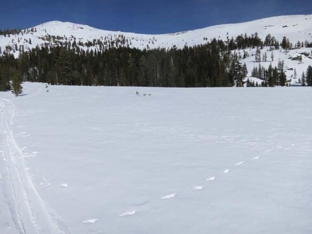 Basin Peak from Round Valley